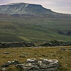 Pen-y-Ghent towers over Ribblesdale  by Paul Whitehead