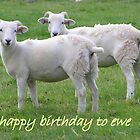 happy birthday to ewe by linsads