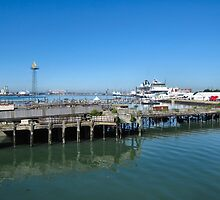The rotting Royal Pier, Southampton Docks, UK. by ronsaunders47