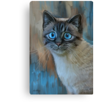 Looking for Love Canvas Print