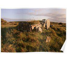 Burren Wedge Tomb Poster