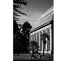 Sunny afternoon Photographic Print