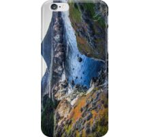 The Great Elemental Forces iPhone Case/Skin