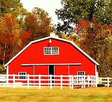 The Red Barn by Ronee van Deemter