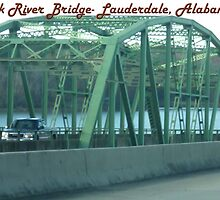 Elk River Bridge- Lauderdale, Alabama by Bea Godbee