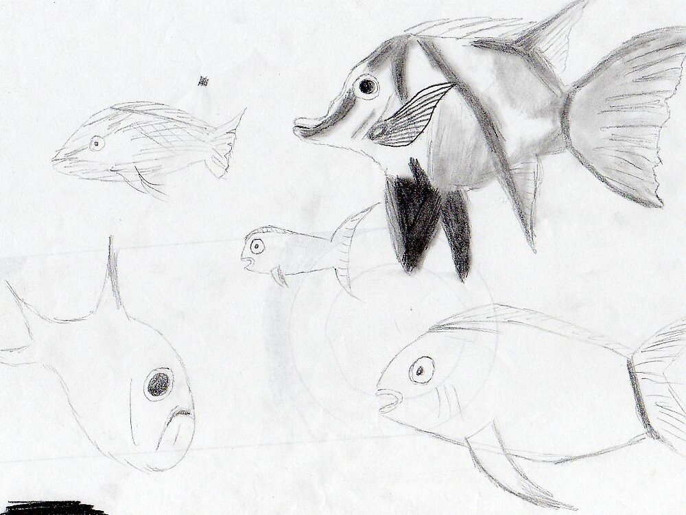 Fishy Wishy by ein22