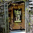 It's Like Looking Through a Window by Kathleen Daley