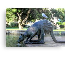 Kangaroos In The City 1 - Perth WA - HDR Metal Print