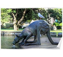 Kangaroos In The City 1 - Perth WA - HDR Poster