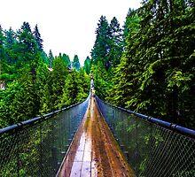 Suspension Bridge by itsteeef