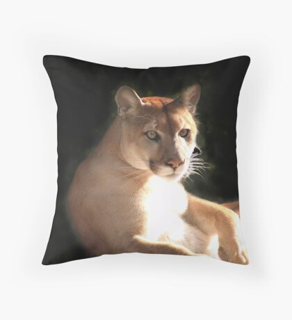 Thatcher Throw Pillow