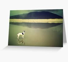 small dog, big weather Greeting Card