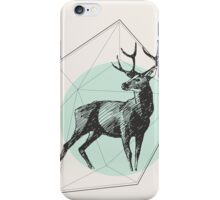 Prism of perception iPhone Case/Skin