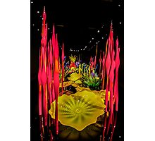 Chihuly's Blown Glass (Part III) Photographic Print