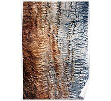 Tree Skin 2 Poster