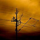 Wires by Elliott Walker