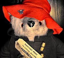 Paddington's Hat by missmoneypenny