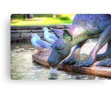 Kangaroos In The City 2 - Perth WA - HDR Canvas Print