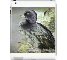 """ Another endangered specis"" iPad Case/Skin"