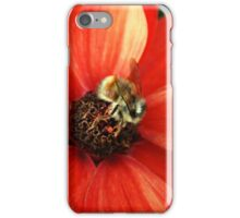 Bumble bee on orange flower iPhone Case/Skin