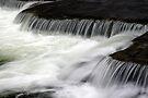 Above Chittenango Falls by Stephen Beattie