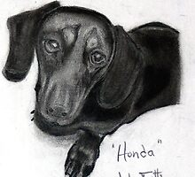 Honda - Dashund by jfgrphc