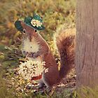 Lady squirrel by Maria Paola R