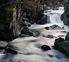 The Lower Gorge by Stephen Beattie