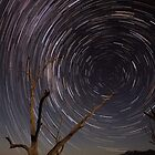 Path To The Wormhole by Jared Revell