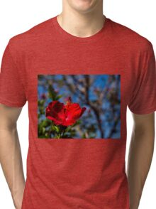 Red hibiscus flower and blue sky Tri-blend T-Shirt