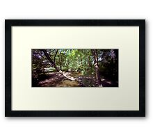 Rooted! Framed Print