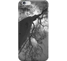 Scary Trees- Moores Road iPhone Case/Skin