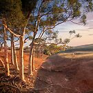 The Red Earth - Red Creek, South Australia by Mark Richards