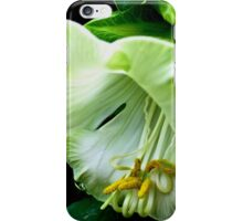 Gardens on the Bay Singapore iPhone Case/Skin