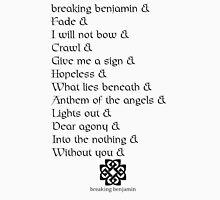 Breaking Benjamin Dear Agony Unisex T-Shirt