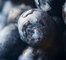 Blueberries by Amandalynn Jones