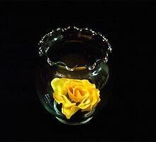 Yellow Petal by Valeria Lee