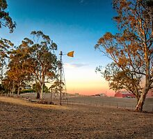 On The Farm - Nairne, South Australia by Mark Richards