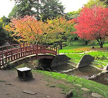 Bridge, blossom and water by lightworks