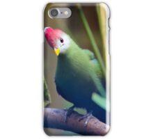 Little Peek iPhone Case/Skin