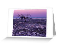 Roebuck Bay-Broome- Australia Greeting Card
