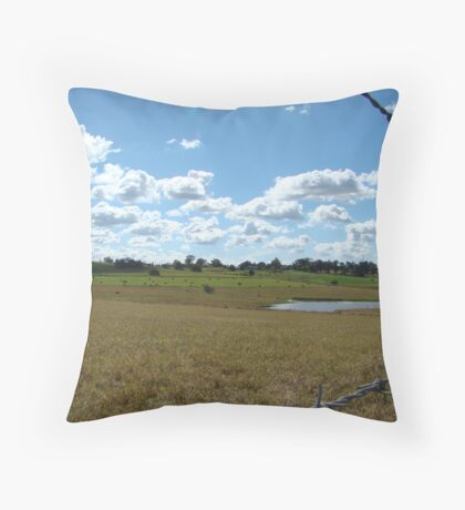 Bardwire Paddock (Issy age 5) Throw Pillow