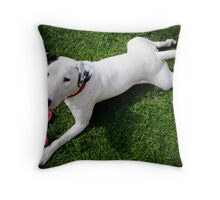 Dog or Frog? Throw Pillow