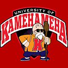 University of Kamehameha by D4N13L