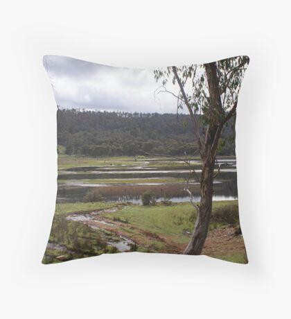 Pine Tier Lagoon, Tasmania, Australia Throw Pillow