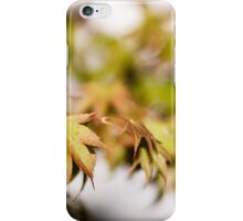 Acer Leaves 3 iPhone Case/Skin