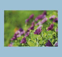 Purple Osteospermum One Piece - Short Sleeve