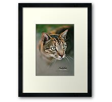 Yiddie Remembered © Vicki Ferrari Photography Framed Print
