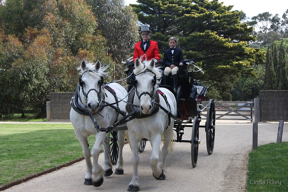 Carriage Awaits by Linda Riley