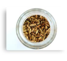 Closeup Aromatic Exotic Striped Indian Cuisine Fennel Seeds Jar Canvas Print
